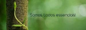 12391432_1025042884225655_3229557193119372747_n